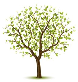 spring-tree-vector-382157