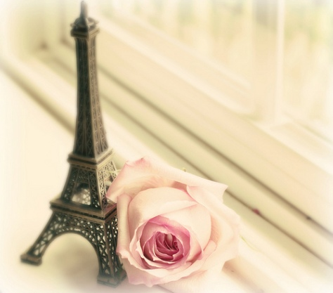 eiffel and rose